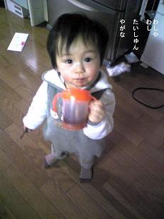 Image1331みに.JPG